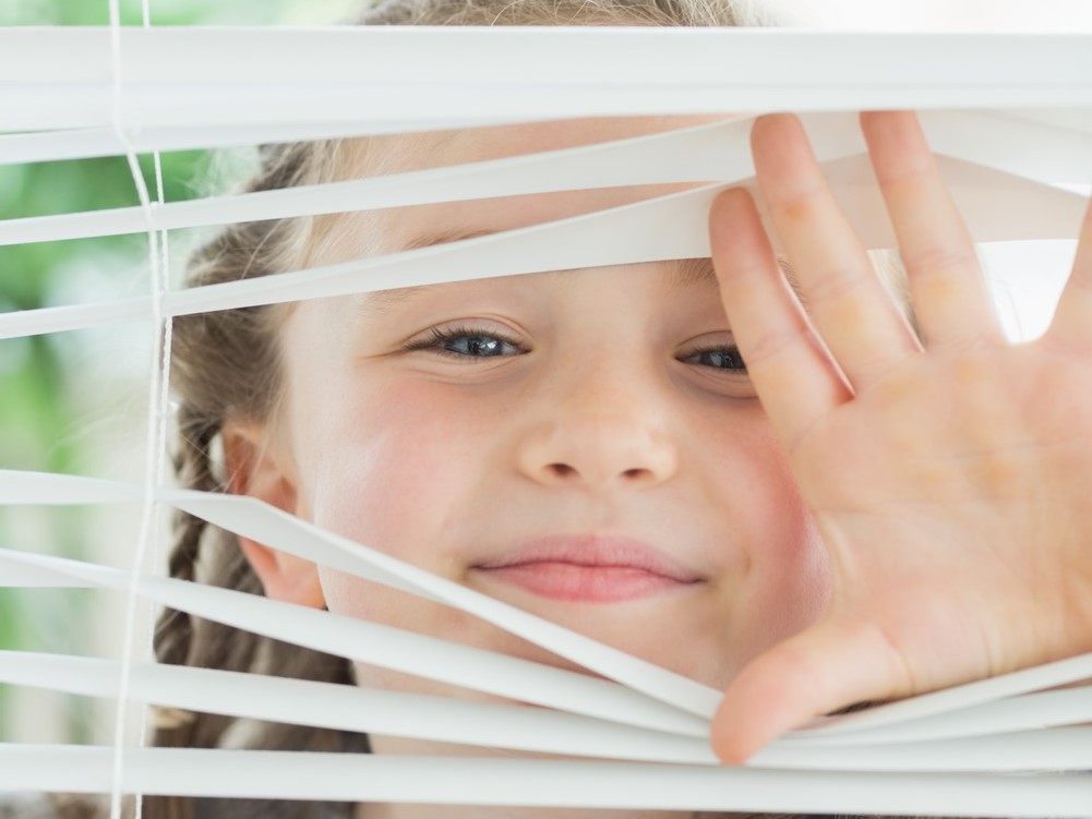 professional window washing edmonton